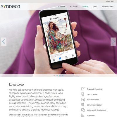 Syndeca - Case Study - PSD to WordPress