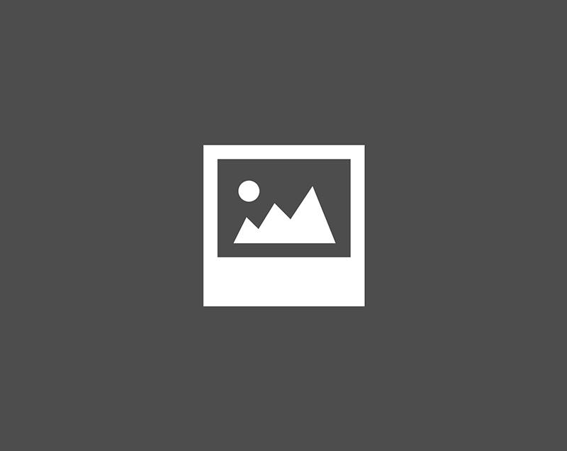 wp-image-settings