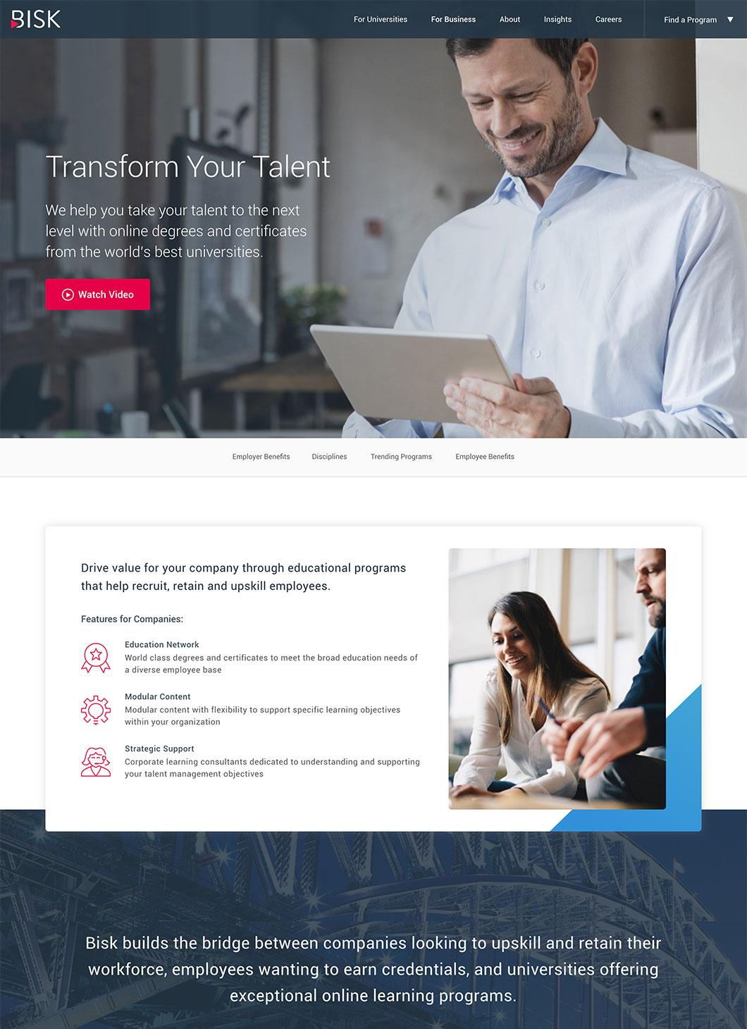 Screenshot of Bisk Business custom WordPress template