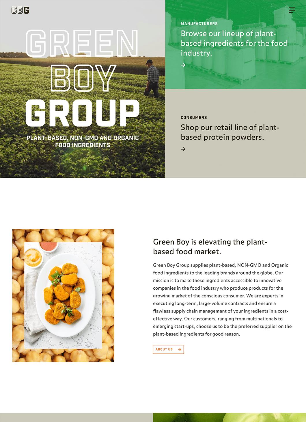 Screenshot of Green Boy Group Homepage